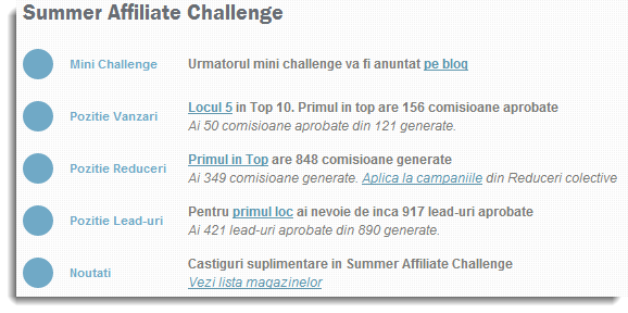 Summer Affiliate Challenge - pozitie interfata